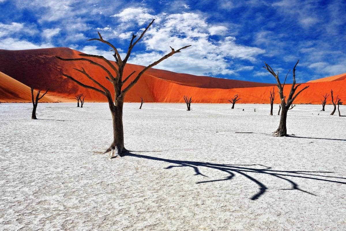 Deadvlei – valge saviplatoo Namiibias - ReisiGuru.ee